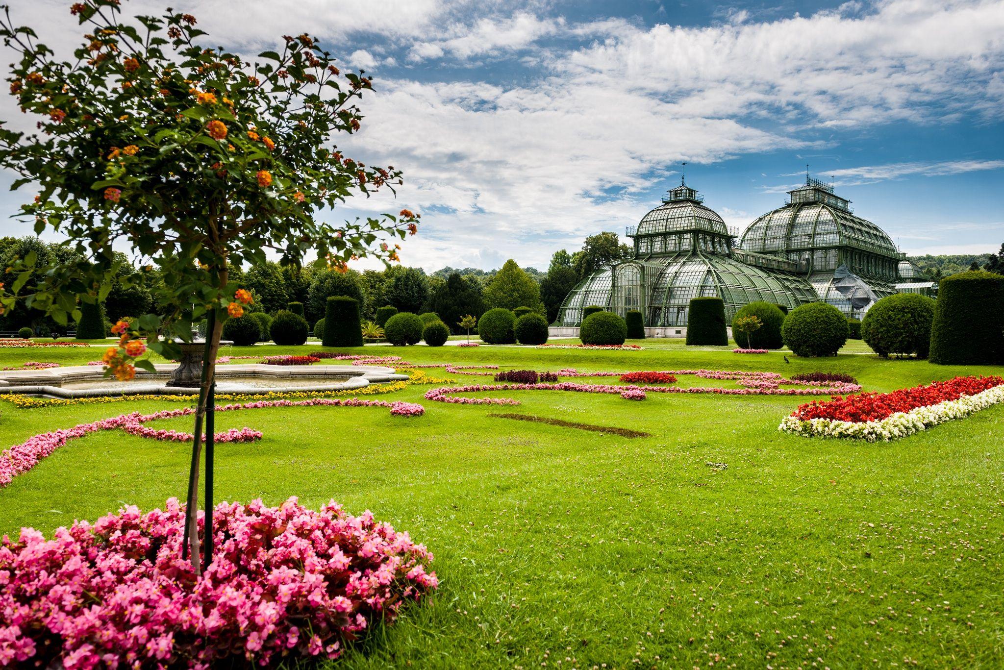 Photograph Palmenhaus Schönbrunn by Attila Kárpáti on 500px