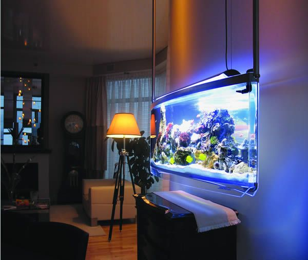 Check out these 11 amazing aquariums spacearium hanging for Aquarium meuble tv