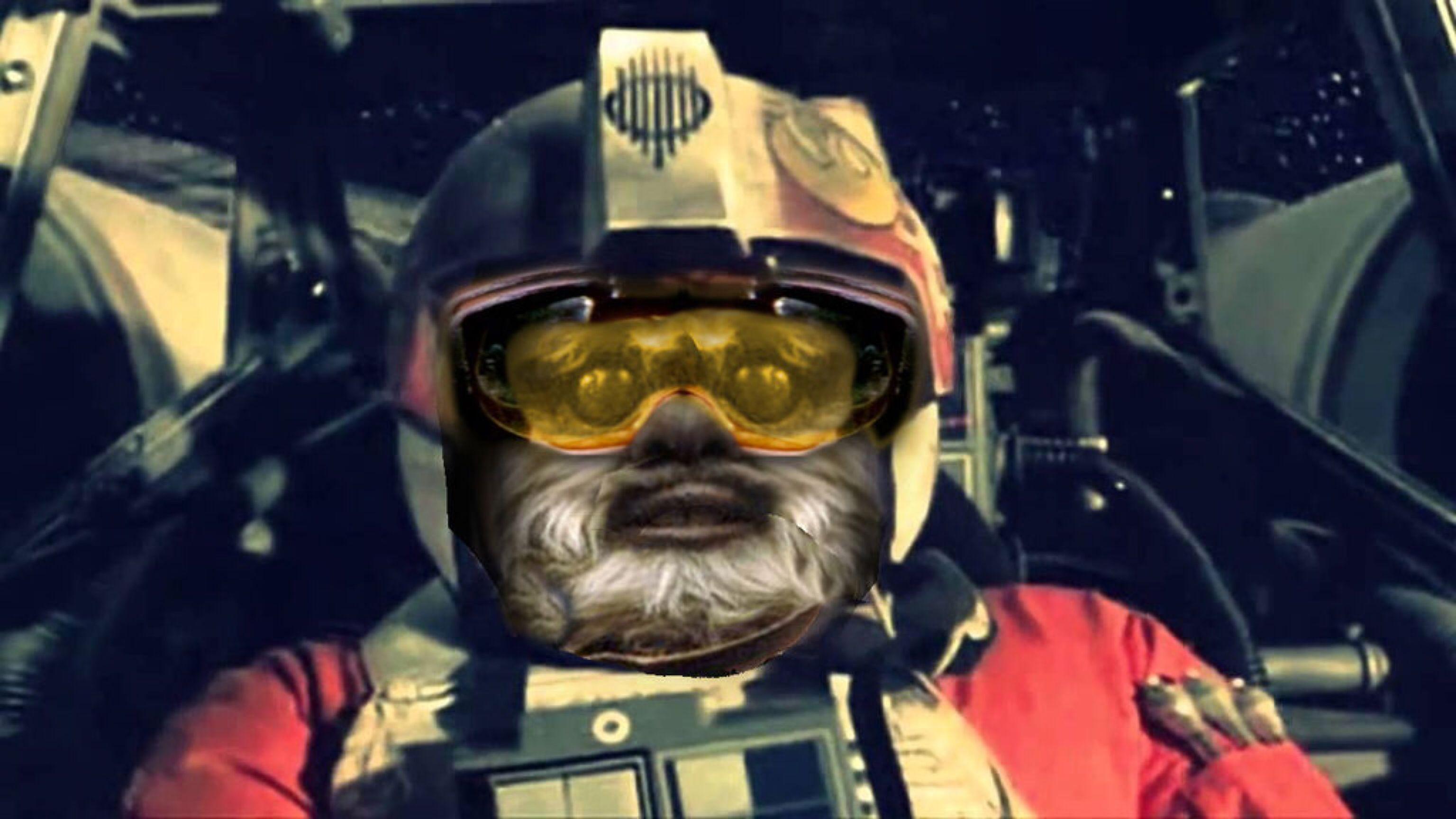 Ewok X Wing Pilot By Brandtk On Deviantart Ewok Star Wars Art Pilot