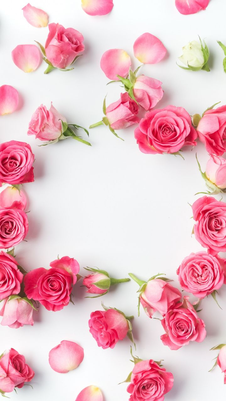 Flowers petals pink roses flowers 720x1280 wallpaper - Red rose petals wallpaper ...