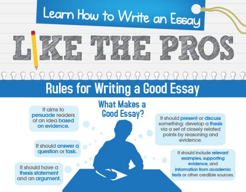 20 Infographics That Will Teach You How To Write An Essay Like a Pro - sample instruction manual template