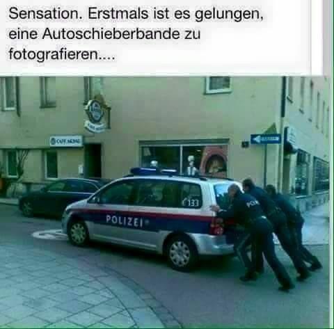 Sensation: Autoschieberbande mit 3 PS - Polizeistärken
