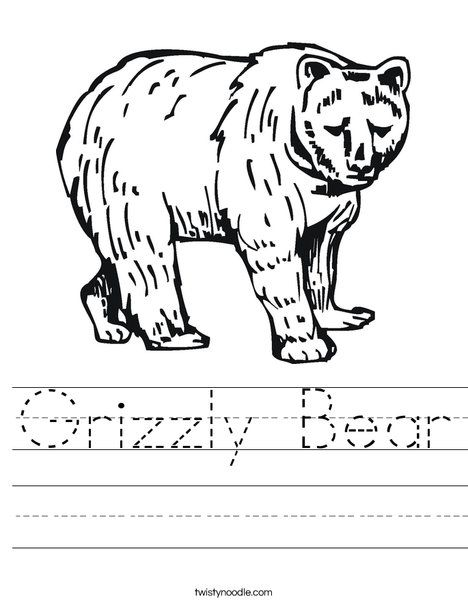 Grizzly Bear Worksheet   Camping theme -Day care   Pinterest
