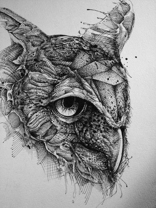 Owl-ink-drawing