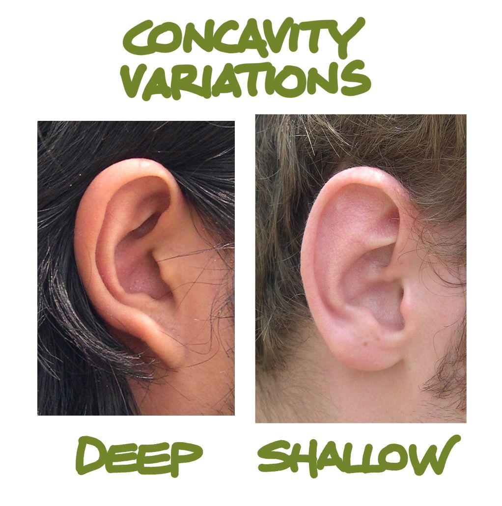 Human Anatomy for the Artist: The External Ear: Shhh, I\'m Listening ...