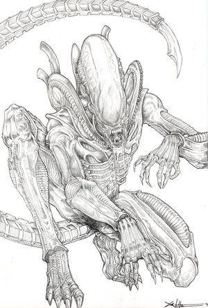 Xenomorph Alien | ALIENS | Pinterest | Pasajeros, Dibujo y Dibujos ...