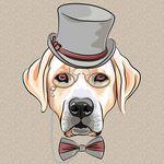 serious cartoon hipster dog Labrador Retriever