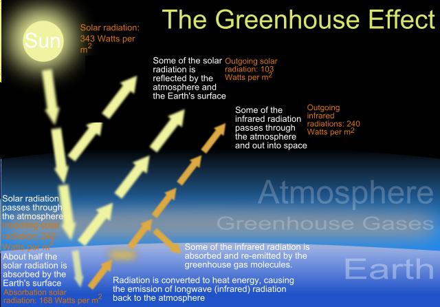 Greenhouse Effect Wikipedia Global Warming Ozone Depletion Essay On