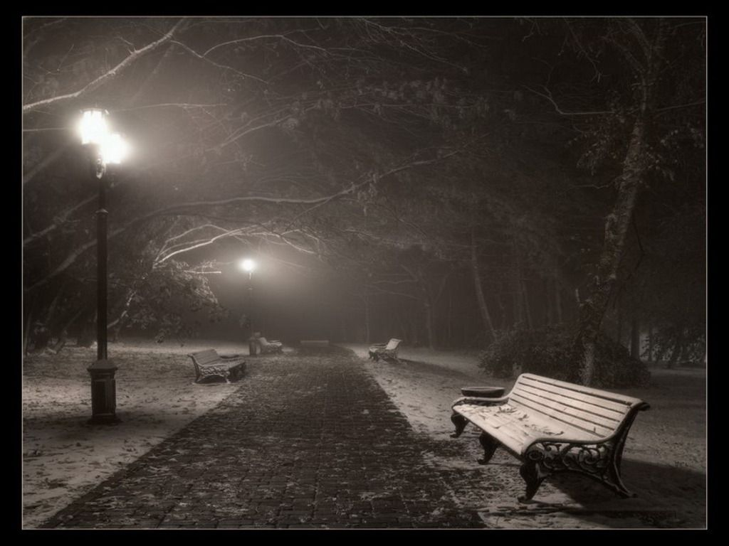 Lonely bench