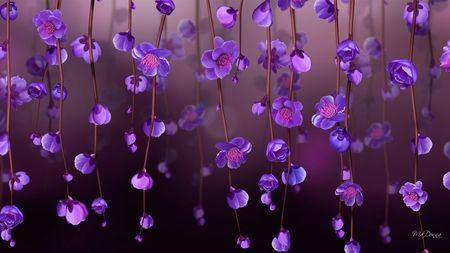 Purple Flowers Wallpaper Wallpapers For Desktop