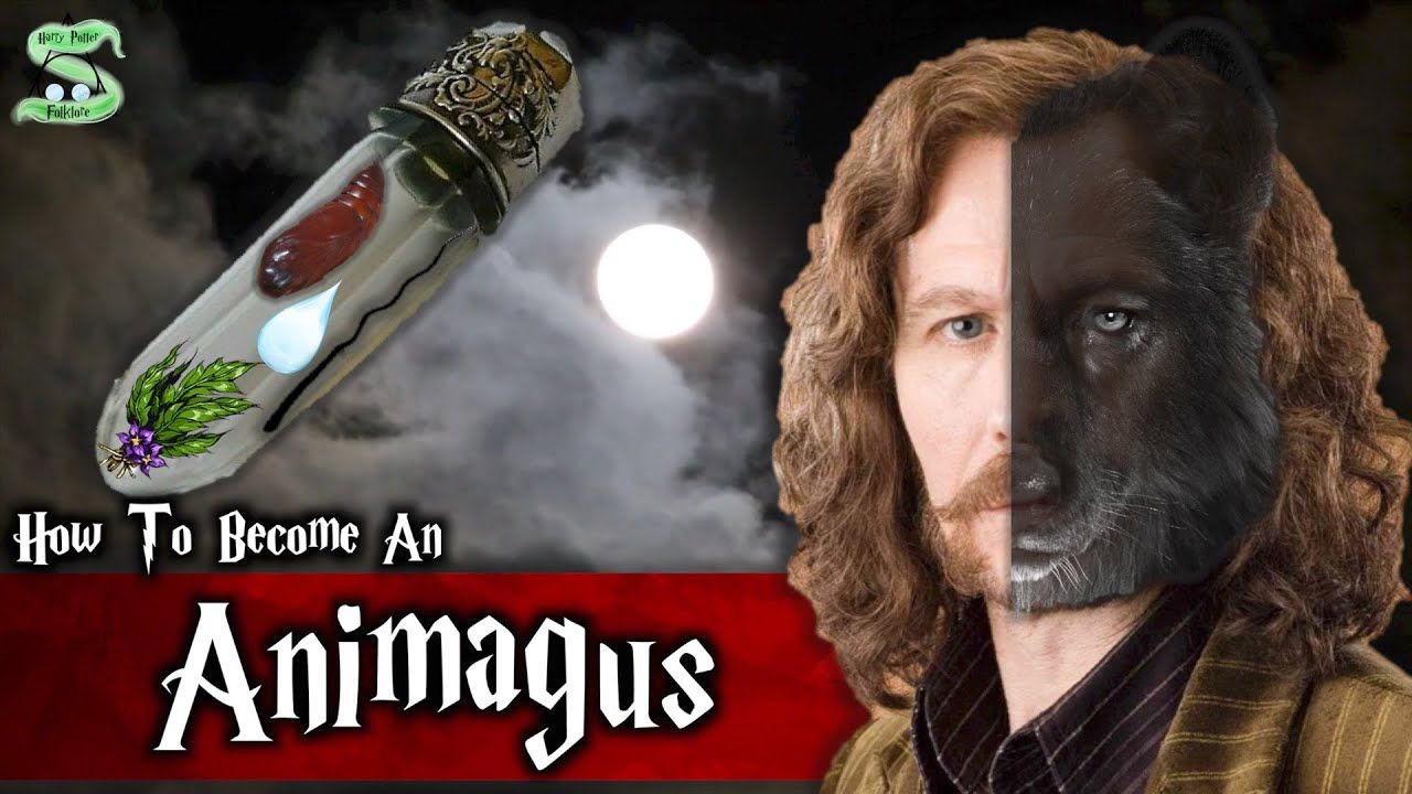 The Complete Animagus Process Explained Youtube Fantastic Beasts And Where Wizarding World Harry Potter