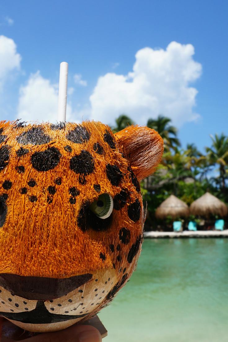¡Los días de playa en Xcaret se disfrutan más con una bebida tropical!