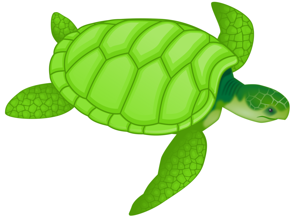 Res Freestockphotos Biz Pictures 11 11029 Illustration Of A Green Sea Turtle Pv Png Penyu Kartun Gambar