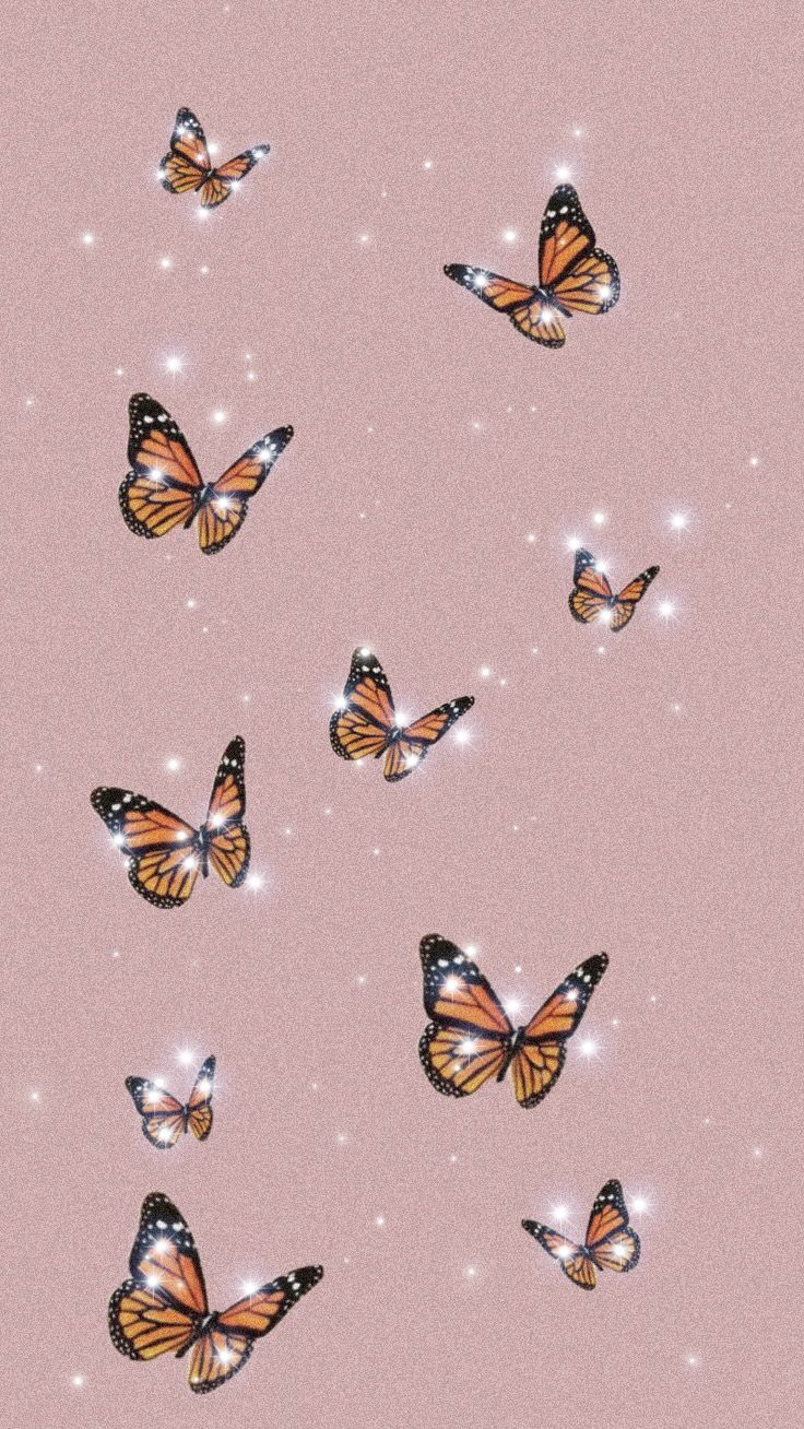 Butterfly wallpaper   Butterfly wallpaper, Butterfly ...