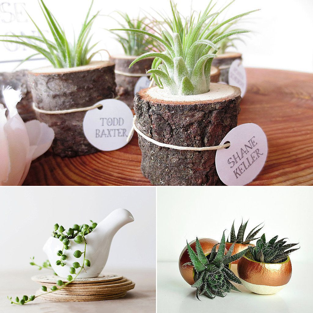 Best Plant For Office Desk Wall Art Ideas Check More At Http