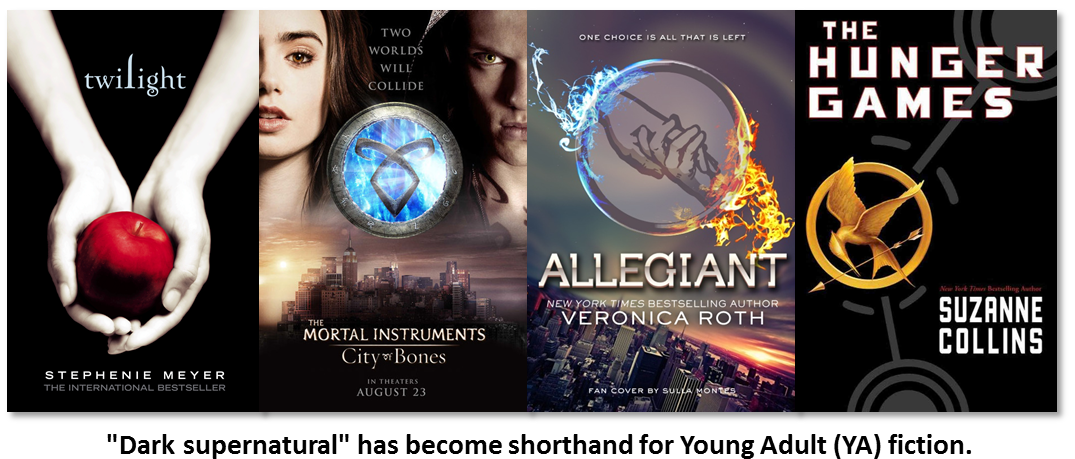 young adult book fiction