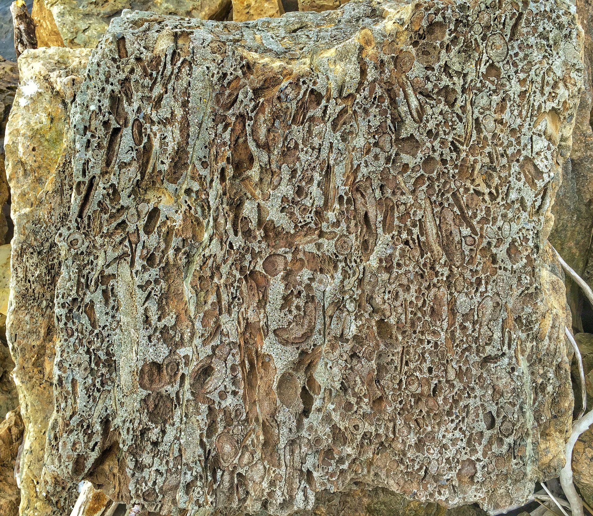 Kuvioitunutta aallonmurtajan kiveä