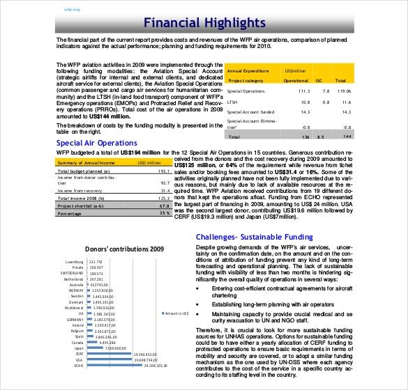 14+ Annual Report Templates