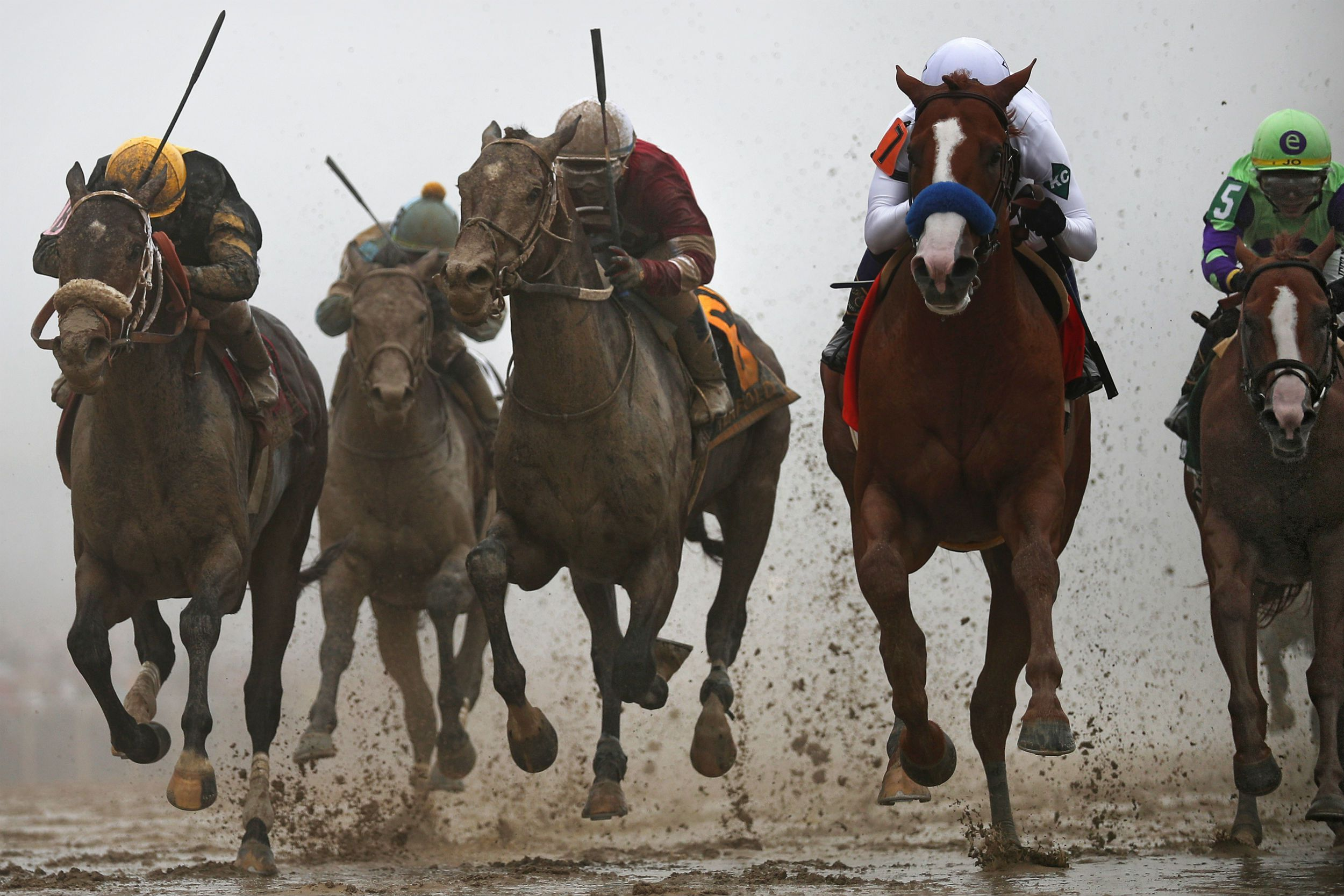 How to watch the preakness stakes live stream with images