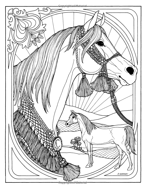 Wonderful World Of Horses Troubador Color And Story Albu Rita Warner Amazon Com Books Horse Coloring Pages Horse Coloring Animal Coloring Pages