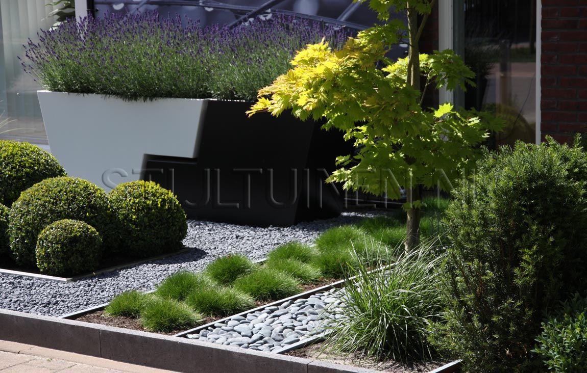 Tuinontwerp bijzondere voortuin met de aangelegde kleine voortuin het leibomen hagen - Moderne landschapsarchitectuur ...