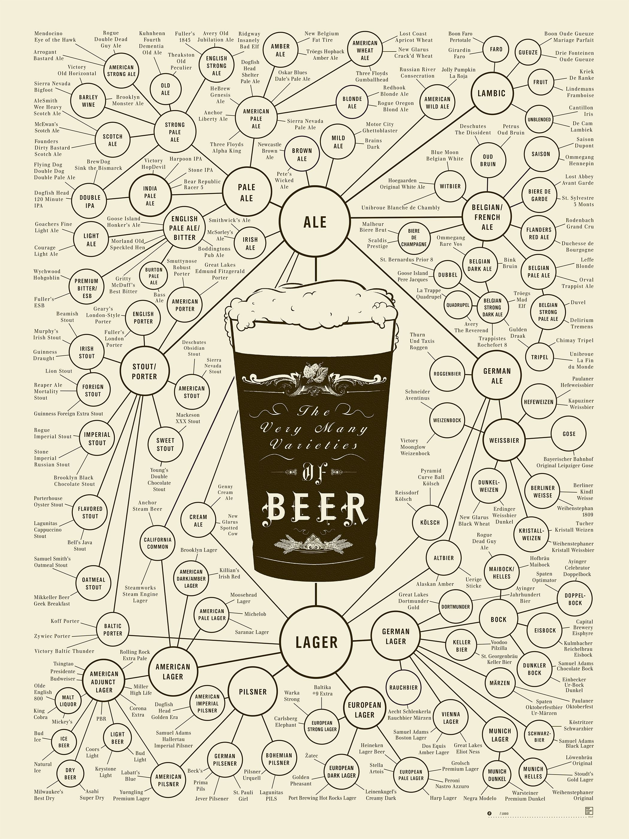 The Very Many Varieties of Beer | Pop charts, Beer and Beer poster