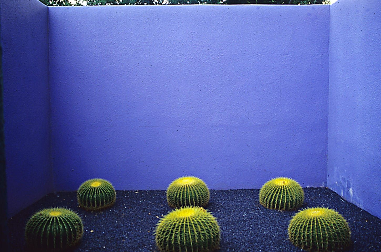 4385dd7bee24a285ef6e7e49d7a9cc3f - Japanese Gardens Art Gallery East Gosford