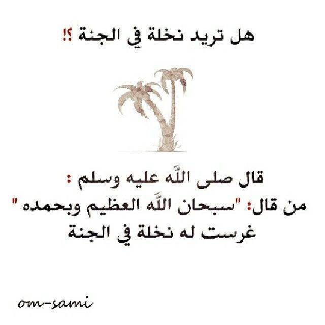 Pin By Felancom On Islaam Submission To God S Will Wisdom Islam Quran