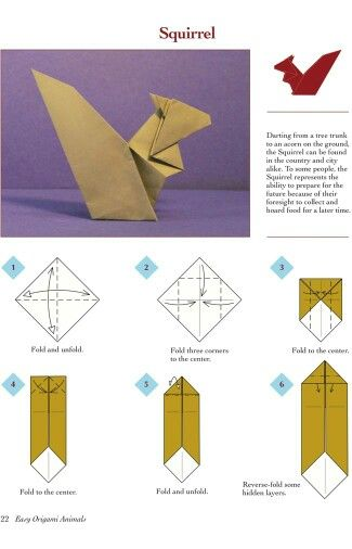 Origami Animal Instructions Elephant Diagram Of The Squirrel Images Gallery Cureuil Tapes 1 A 6 Rh Com