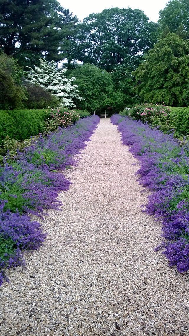 Photo of Landscape Border Designs 10+ Superb Garden Edging Ideas