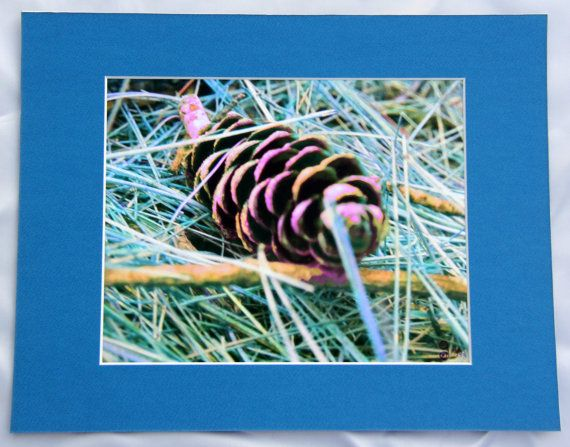 Matted  Ready to frame or hang  Painted Pinecone  by Gwynyfier, $30.00