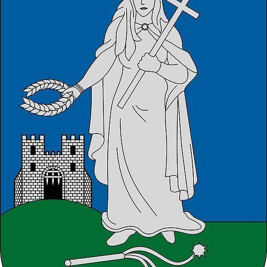Coat of Arms of Zalaegerszeg Hungary. #Zalaegerszeg Coat of arms Arms Coat