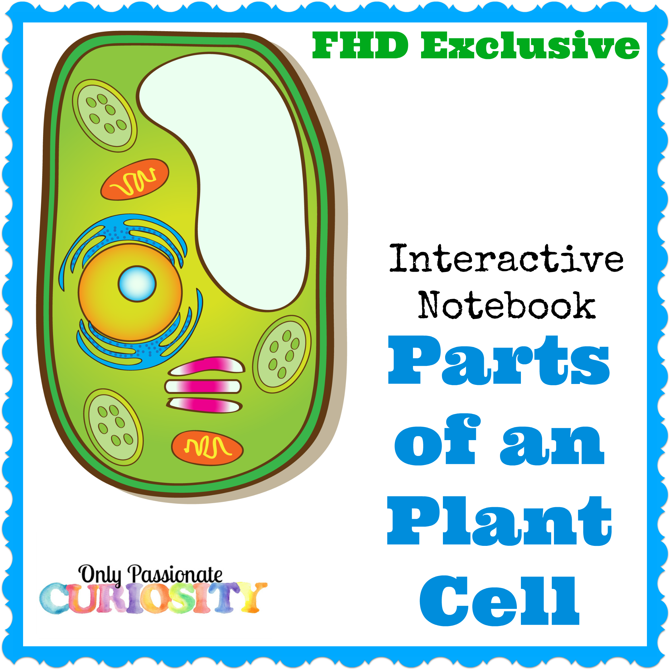 Free Plant Cell Interactive Notebook Instant Download Cell Interactive Notebook Interactive Notebooks Plant Cell [ 2148 x 2148 Pixel ]