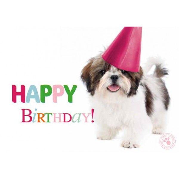 Happy Birthday Dog, Happy