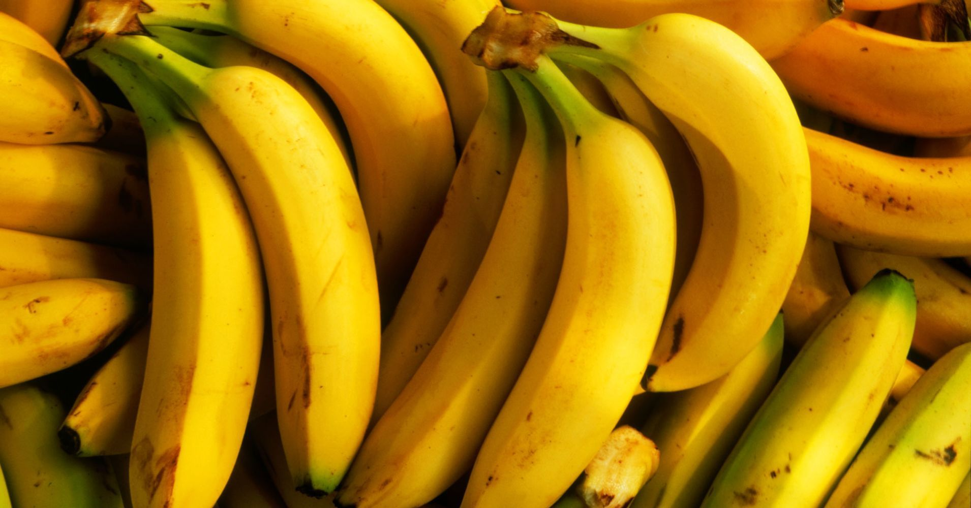 America's favorite fruit could go extinct Fruit, Banana