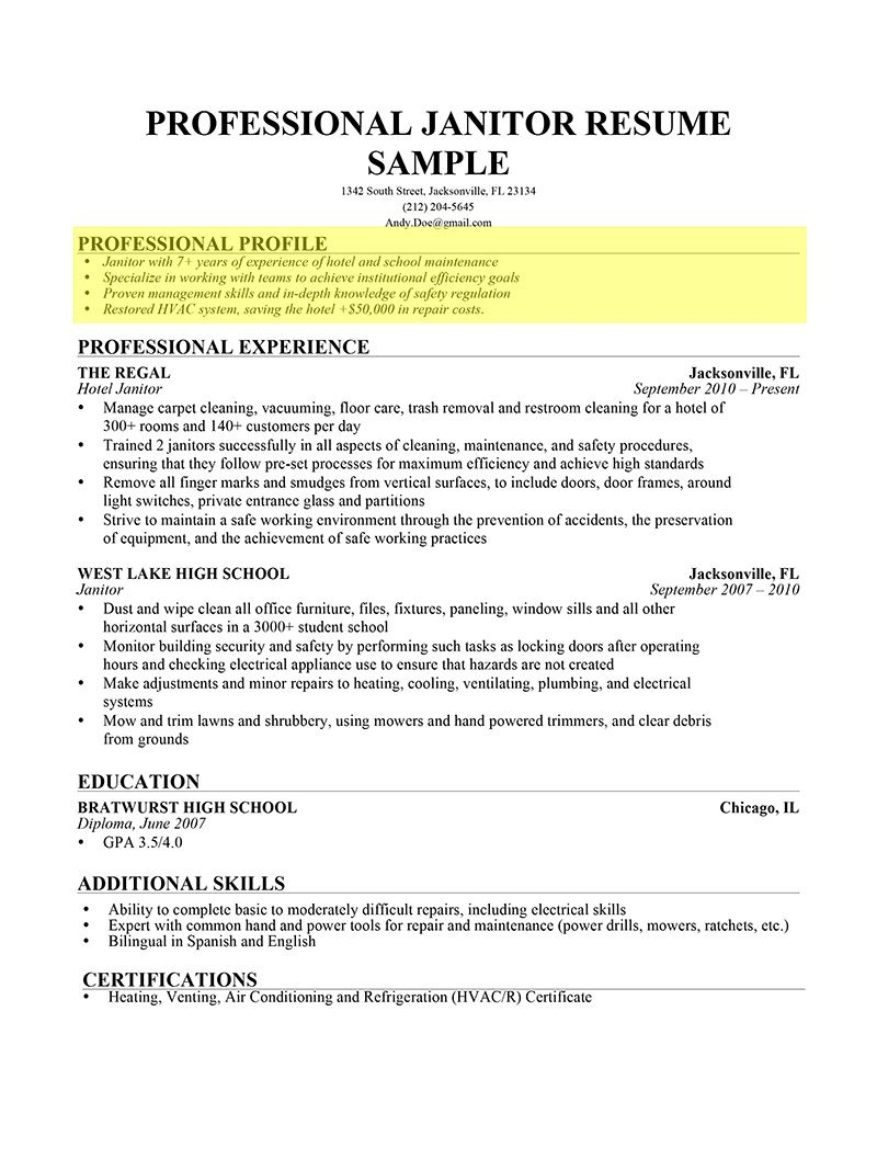 Pin By Maurice Davis On Business Resume Profile Examples