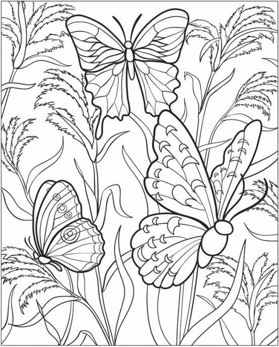 Kids Gardening Coloring Pages Free Colouring Pictures To Print Butterfly Coloring Page Free Coloring Pictures Insect Coloring Pages