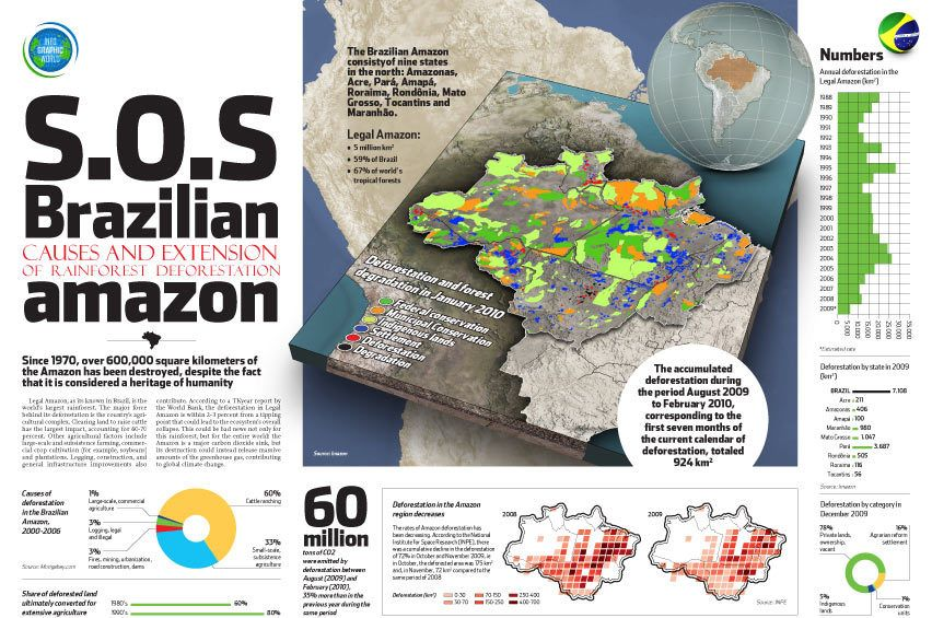 Deforestation In The Amazon Deforestation Facts Infographic