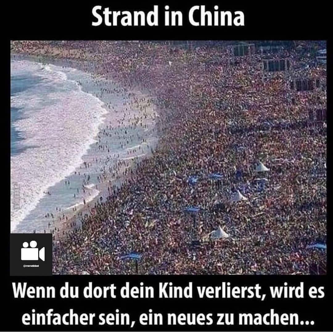 13 Best Deutsche Meme Images Funny Funny Pictures Humor