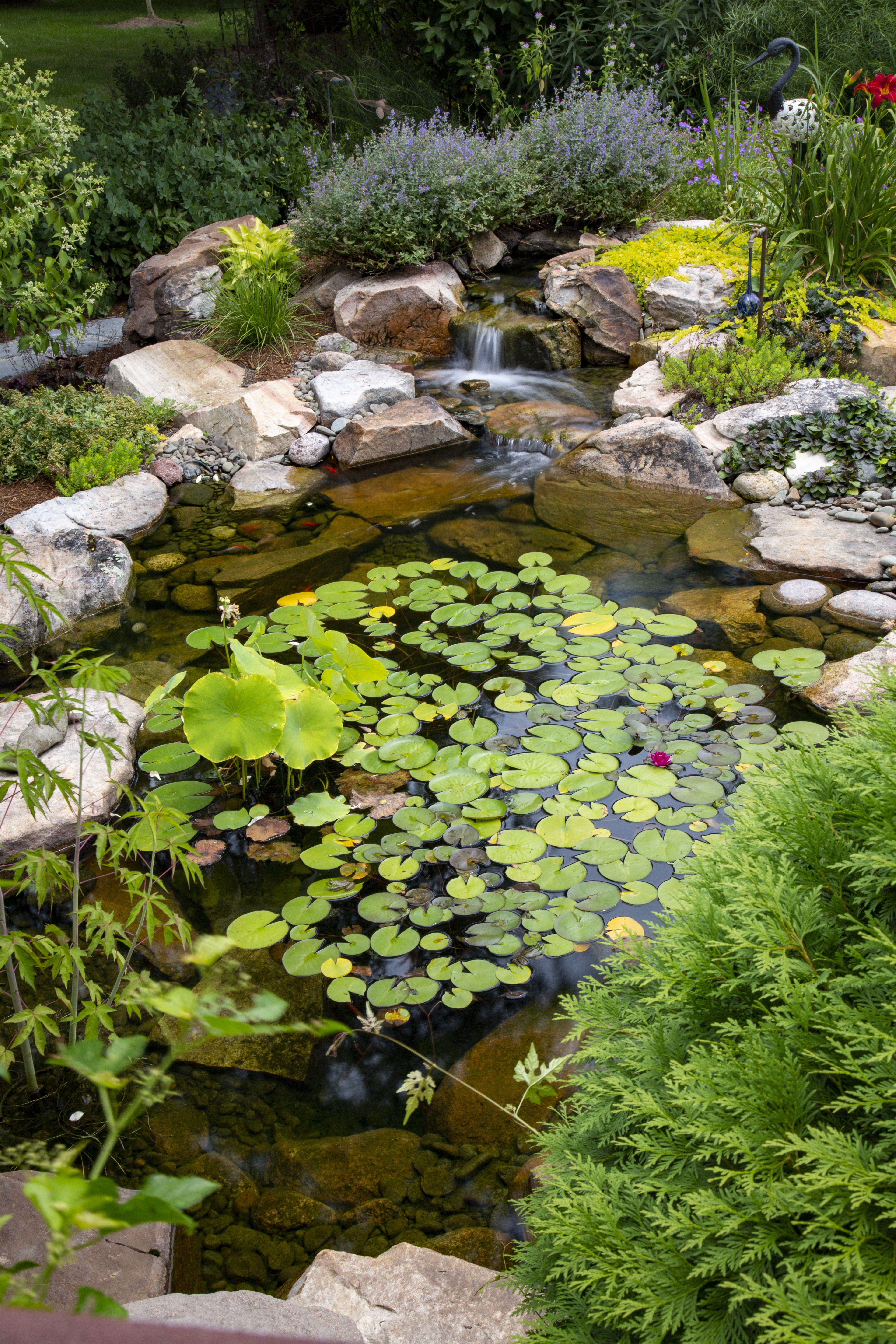 Small Plants For Small Ponds Aquascape Inc Ponds For Small Gardens Plants For Small Gardens Backyard Water Feature