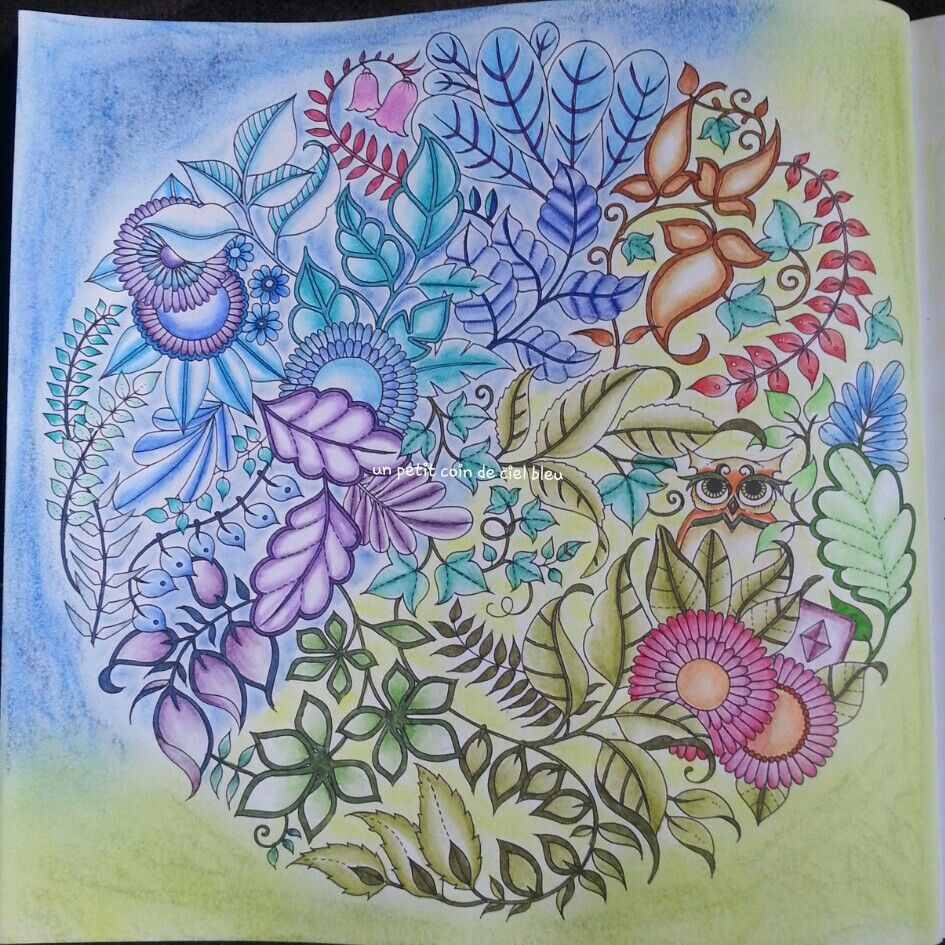 Foret Enchantee Johanna Basford Garden OwlForest PicturesEnchanted
