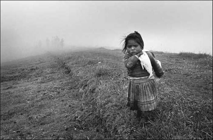 Otra América Sebastião Salgado-Sebastião Salgado has been awarded numerous major photographic prizes in recognition of his accomplishments. He is a UNICEF Goodwill Ambassador, and an honorary member of the Academy of Arts and Sciences in the United States. In 2004, Sebastião Salgado began a project namedGenesis, aiming at the presentation of the unblemished faces of nature and humanity.