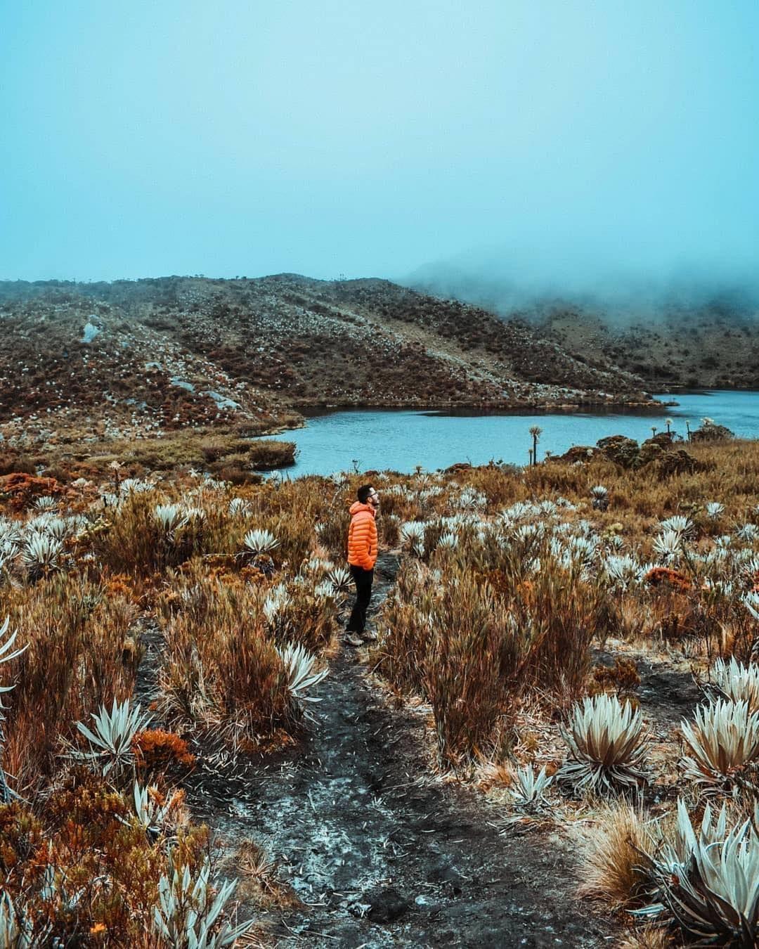 El Parque Nacional Natural Chingaza Es Uno De Los Mas Importantes En Colombia Ya Que Este Provee De Agua A Quiza U Travel Natural Landmarks My Favorite Image