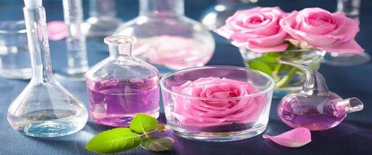 طريقة عمل غسول للوجه بماء الورد بالخطوات في المنزل Rose Flower Rose Flowers