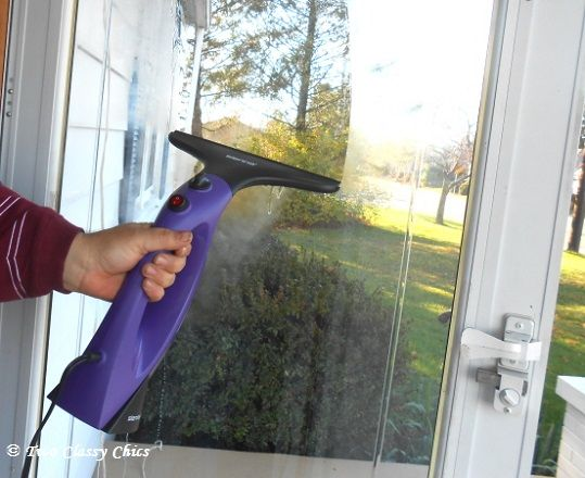Visio Window Steam Cleaner How I Clean My Windows Steam Cleaners Favorite Cleaning Products Window Cleaner