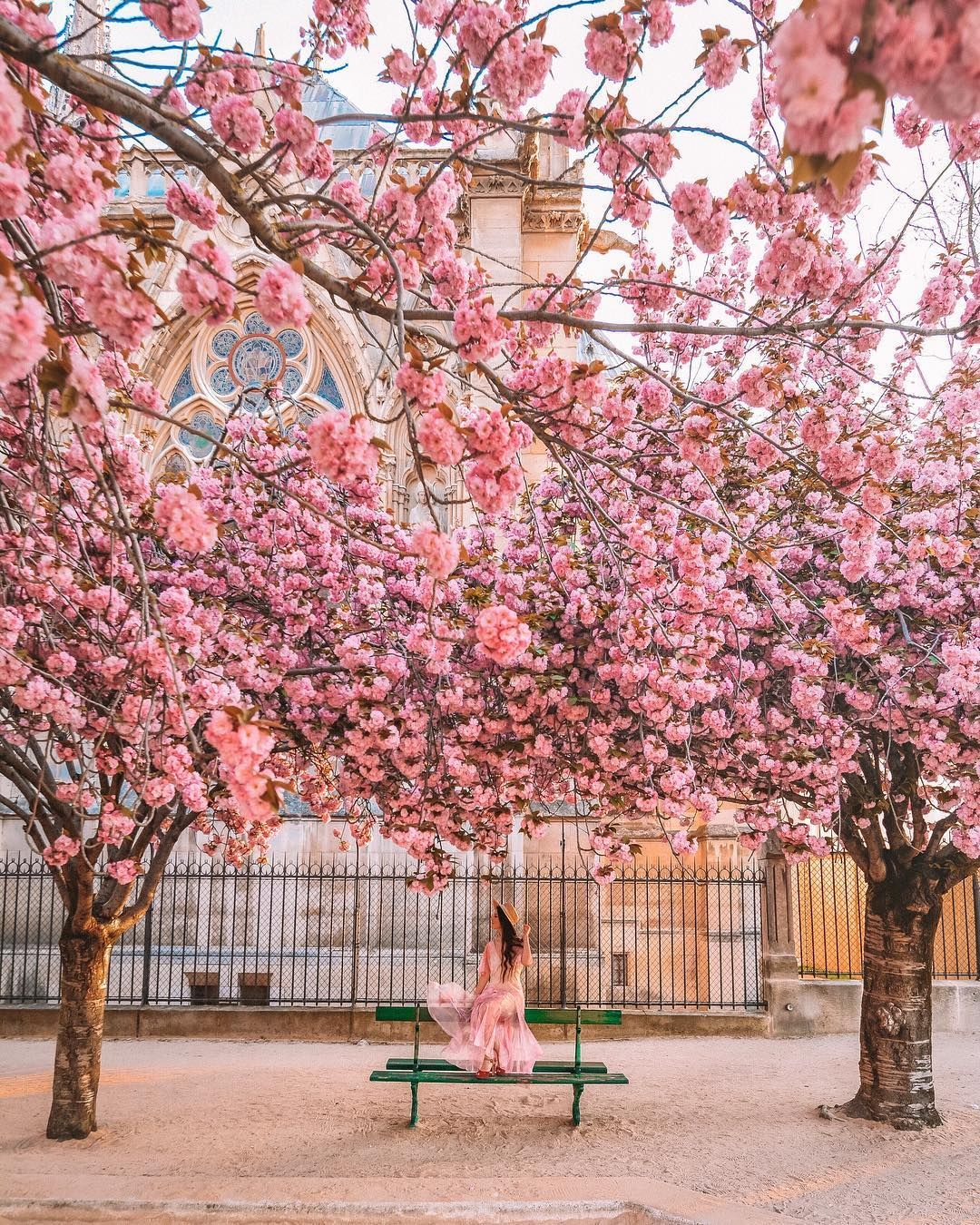 Nathalie Roch Nathalie Wanders Instagram Photos And Videos Travel Picture Ideas How To Take Photos Travel Photography