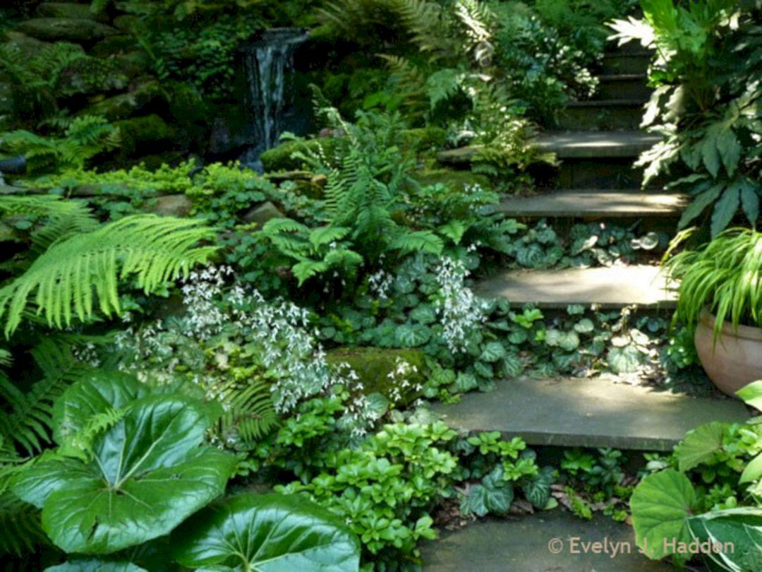 35+ Beautiful Woodland Garden Ideas Easy To Create | Woodland garden on shade garden designs, small rock garden ideas, private garden designs, meditation garden designs, small greenhouse designs,