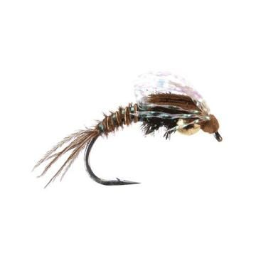 Nymphs Sweetwater Fly Shop Fly Shop Fly Fishing Nymph