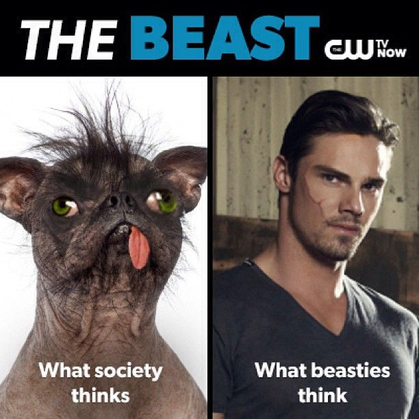 Beast is in the eye of the beholder. Two days until the return of #BATB!