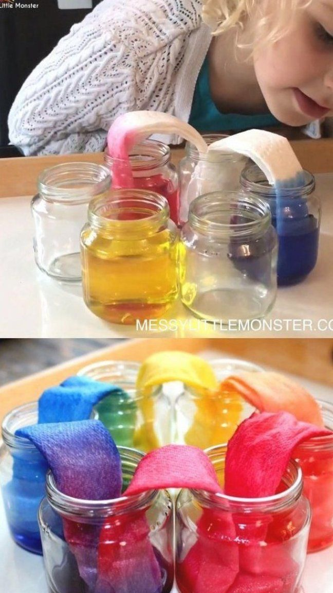 Rainbow walking water science experiment for kids #rainbowscience #rainbowscienceexperiment #rainbow...